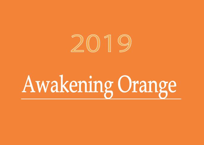 今年注目の色、もう1色は、『アウェイクニングオレンジ』!!